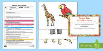 EYFS Zoo Animals in a Tangle Finger Gym Plan and Resource Pack - animals, safari Park, pets, threading, lacing, sewing,