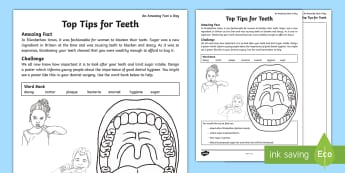 Top Tips for Teeth Activity Sheet - teeth, dental hygiene, looking after teeth, teeth poster,tooth care, amazing fact august