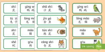 宠物主题词汇卡片(拼音) - 宠物,动物,猫,狗,兔子,鼠,词汇卡片,拼音