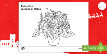 Poinsettia Colouring Activity Sheet English/Italian - christmas, flowers, red, tradition, traditional, mexico, mindfulness, relax, worksheet, EAL