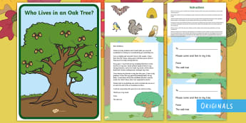 Oak Tree's Friends Writing Activity Resource Pack - Twinkl Originals, Twinkl Fiction, story, reading, books, life cycle, oak tree, acorn, woods, woodlan