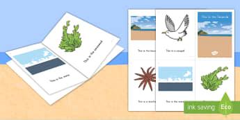 This Is the Beach Emergent Reader - Beach, Ocean, Sea, Emergent Reader, Beach Emergent Reader, Ocean Emergent Reader, Sea emergent Reade