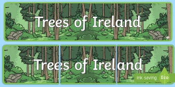 Trees of Ireland Display Banner - ROI- National Tree Week 5th - 12th March, trees, national tree week, roi, republic, nature, outside,