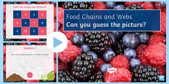 Food Chains Quiz - PowerPoint Quiz, Food Chain, Food Web, Producer, Carnivore, Herbivore, Omnivore