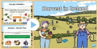 Harvest in Ireland PowerPoint-Irish - ROI Harvest,Irish