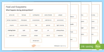 OCR 21st Century Combined Science Living Together Food and Ecosystems Word Mat - Word Mat, gcse, biology, ecology, ecosystem, photosynthesis, respiration, factors, producers, transp