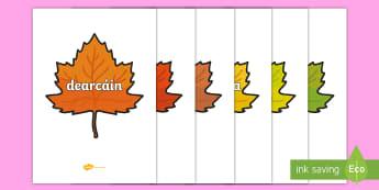 Autumn Words on Leaves Display Posters Gaeilge - fómhar, duilleoga, irish, aimsir, seasons, séasur, weather,Irish