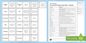 OCR 21st Century You and Your Genes Loop Cards - Ribosomes, mitochondria, homozygous, heterozygous, eukaryotic, prokaryotic