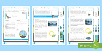 The Water Cycle Fact File - Earth's Surface, Evaporation, Condensation, precipitation, runoff, science reading
