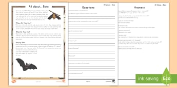 All About Bats Fact File Activity Sheet - Bats, reading comprehension, nonfiction, informational text, animals