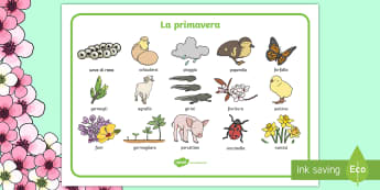 La Primavera Vocabolario Illustrato - la, primavera, primaverile, vocabolario, illustrato, italiano, italian, materiale, scolastico