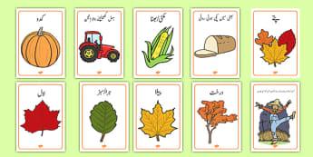 Autumn Display Posters Urdu - urdu, Autumn, poster, display, harvest, harvest festival, fruit, apple, pear, orange, wheat, bread, grain, leaves, conker