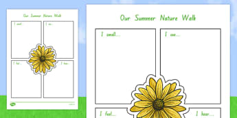 Our Summer Nature Walk Writing Frame - nz, new zealand, summer, writing, frame