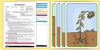 Life Cycle of a Sunflower Movement Activity EYFS Adult Input Plan and Resource Pack - EYFS, Early Years planning, adult led, EAD, PE, Expressive Arts and Design, plants and growth