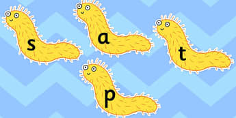Phase 2 Phonemes on Bristle Worms to Support Teaching on Sharing a Shell - worm, words, phoneme, bristle
