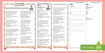 To A Louse By Robert Burns Differentiated Reading Comprehension Activity-Scottish - Requests CfE, reading, Robert Burns, social studies, significant individual, Scotland, reading compr