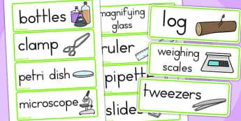 Minibeasts Investigation Word Cards - minibeast, visual aid