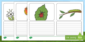 Minibeast Picture Simple Sentence Writing Frames - writing frames, minibeasts, ks1, writing frame, writing, nature, insects, simple sentences, colourin