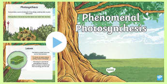 Phenomenal Photosynthesis PowerPoint - Photosynthesis, Plants, Plant needs, Producers, Carbon Dioxide, Oxygen, Plant life cycle, Glucose, C