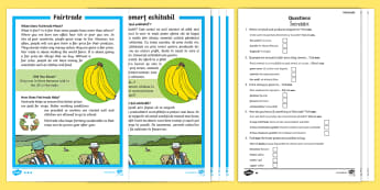 Fairtrade Differentiated Reading Comprehension Activity English/Romanian - KS1, Key Stage 1, Key Stage One, Year 1, Year 2, Reading Comprehension, Fact File, Differentiated, R