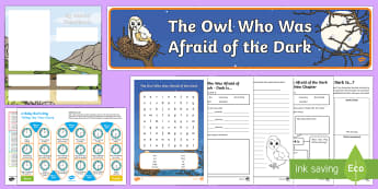 The Owl Who Was Afraid of the Dark Resource Pack to Support Teaching on The Owl Who Was Afraid of the Dark - The Owl Who Was Afraid Of The Dark, stars, light, fireworks, day, night, nocturnal, Barn owl, huntin