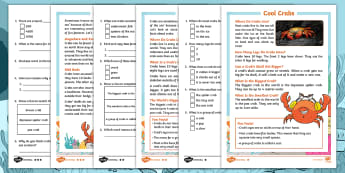 Starry-Eyed Stan Cool Crabs Differentiated Reading Comprehension Activity - Twinkl Originals, Fiction, under the sea, seaside, beach, oceans, coral, marine life, reading skills