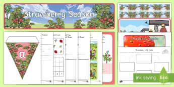 Strawberry Season Early Childhood Resource Pack - plants, fruit, strawberries, farm, farming, field trip, picking