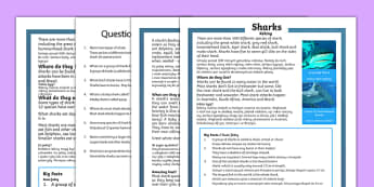 Sharks Differentiated Reading Comprehension Activity Polish Translation - Sharks, sea creatures, KS1 reading, non-fiction, information, comprehension, questions, fact file, polish, translation, literacy, mfl, eal