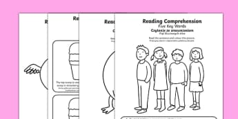 Reading Comprehension Five Key Words Activity Sheets Polish Translation - SEN/SALT, reading, inference, information, speech, language, instructions, colour, colouring, worksheet
