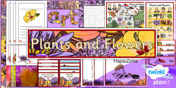 Art: Plants and Flowers Unit UKS2 Additional Resources