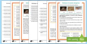 Compréhension écrite différenciée : Les animaux et insectes dangereux - animaux, mouche tsé-tsé, maladies, lecture, mortel,French