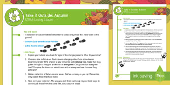 EYFS Take It Outside: Autumn STEM - Lovely Leaves Activity - Little Acorns, twinkl fiction, originals, Outdoor and Woodland Learning, Wonder Investigate Learn Di