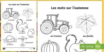 Feuilles de coloriage sur l'automne - saisons, tracteur, feuilles, écureuil, citrouille