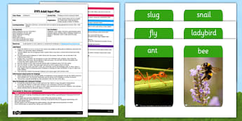 Minibeasts What's Missing? Game EYFS Adult Input Plan and Resource Pack -EYFS, Early Years planning, adult led, insects, concentration, C&L, Communication and Language