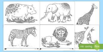 Coloriages anti-stress : Le safari - arts plastiques, arts, couleurs, cycle 1, cycle 2, cycle 3, safari, Afrique, animaux
