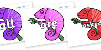 Tricky Words on Chameleons - Tricky words, DfES Letters and Sounds, Letters and sounds, display, words