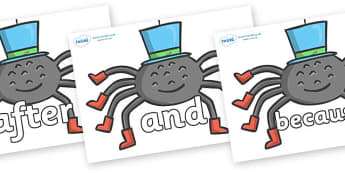 Connectives on Spiders - Connectives, VCOP, connective resources, connectives display words, connective displays