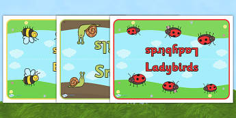 Editable Class Group Table Signs (Minibeasts) - Minibeasts, group signs, group labels, group table signs, table sign, teaching groups, class group, class groups, table label