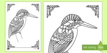Kingfisher Mindfulness Colouring Page - New Zealand Mindfulness