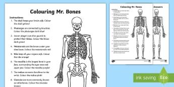 Colouring Mr. Bones Activity Sheet - The Human Body, human, body, bones, skeleton, skeletal, skeletal system, skull, worksheet