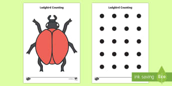 Ladybird Spot Counting Activity - ladybird, Maths, Math, spots, dots, counting, Counting on, Counting back, counting card, counting activity, one to one counting, flashcard, matching cards, numeracy, numbers, counting