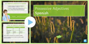 Possessive Adjectives PowerPoint - Spanish - Spanish Grammar, possessive adjectives, adjetivos posesivos, powerpoint