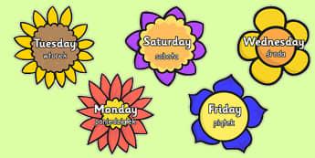Days of the Week Polish Translation - polish, days, week, days of the week, flowers