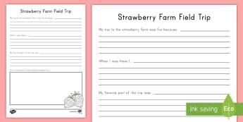 Strawberry Farm Field Trip Write-Up Activity Sheet - strawberries, strawberry plants, strawberry farming, strawberry picking, strawberry plant life cycle
