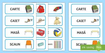 Obiecte din mediul familiar al copiilor Cartonașe pentru sortare - cartonașe, jetoane, jocuri, comunicare, clasa pregătitoare, pregătitoare, romanian, resurse, mate