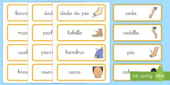 Tarjetas de vocabulario: El Cuerpo y la salud  - cuerpo, salud, tarjetas, vocabulario, decoración,Spanish