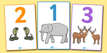 Numbers 0 20 With Animals Display Posters - 0-20, animals, counting, numbers, numeracy, number recognition, counting animals, corresponding number of animals, animal posters, display posters, display