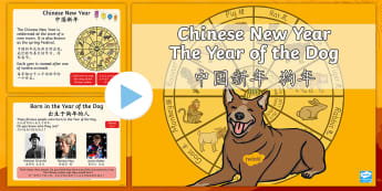 KS1 The Year of the Dog Information PowerPoint English/Mandarin Chinese - chinese new year, chinese festivals, chinese traditions, zodiac, characteristics of animals, EAL