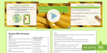 Science Club: Banana DNA Extraction Activity - DNA, dNA extraction, genetics, science club, banana,
