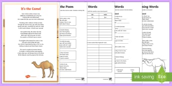 The Camel Poem Activity Pack - UAE, ADEC, MOE, animals, camel, desert, poem, activity sheets, emirates, sand, rhyme, rhyming words,